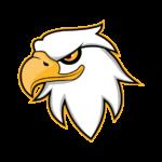 Hawk AIO